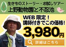 WEB限定3980円-生きものストーリーツアー上野動物園と不忍池